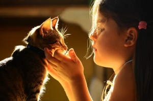 This is the image of a young girl in sunlight holding her cat with open arms
