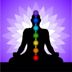 This is an image of the seven chakras of the body.